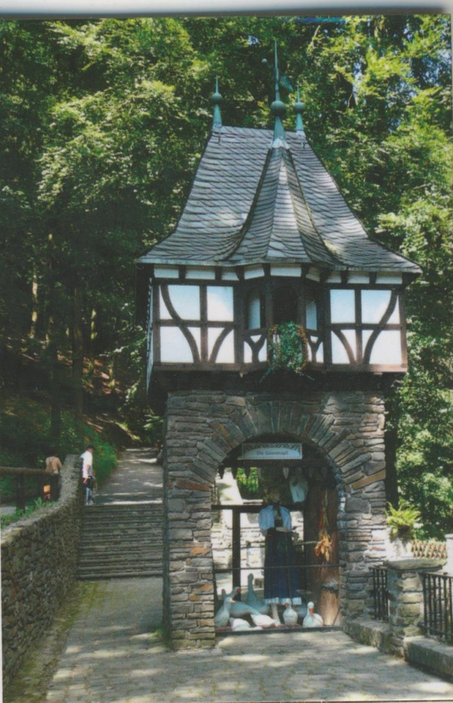 Märchenwald1