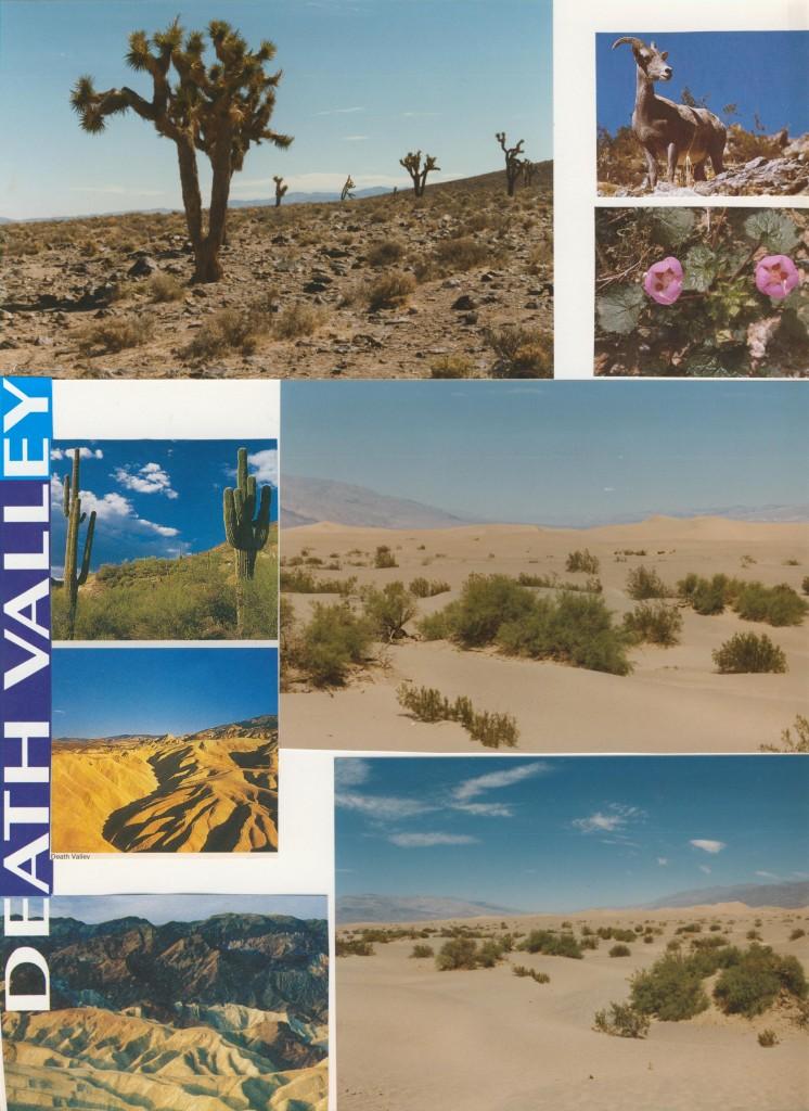 bei +50 Grad im Tal des Todes ( Death Valley)